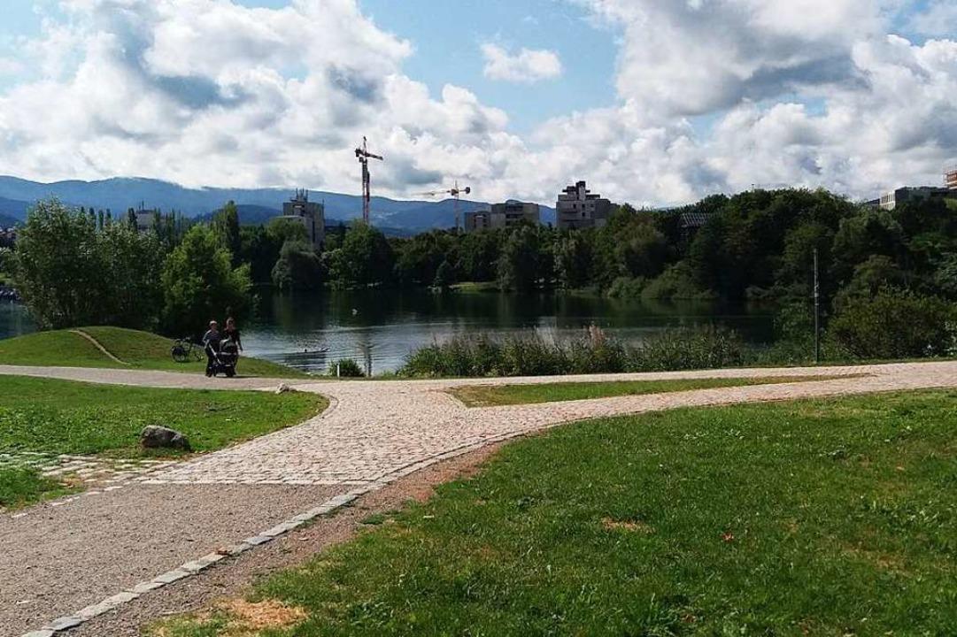 Der Seepark mit dem Flückigersee. Auf ...en Neubauten der Studierendensiedlung.  | Foto: Thomas Jäger