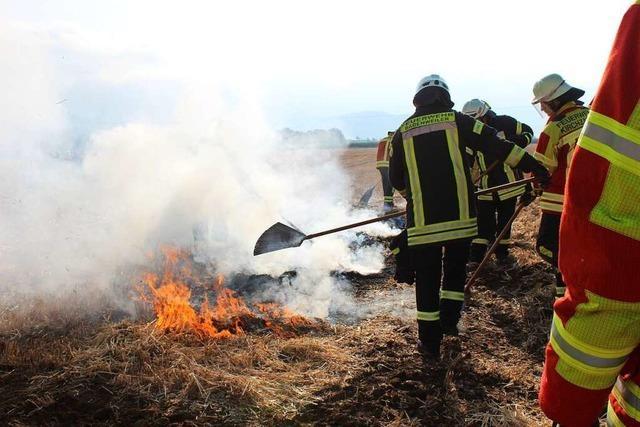 Mit Spaten und Hacken statt viel Wasser: Wie die Feuerwehr Vegetationsbrände richtig löscht