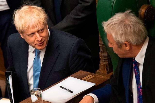 Was die geplante Schließung des Parlaments für den Brexit bedeutet