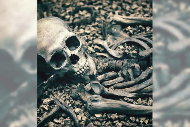 Knochenharte Zeiten