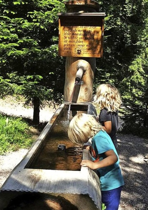 Frisches Quellwasser erwartet die Kind...beim Brunnen bei der Bücklebodenhütte.  | Foto: Ulrike Gau