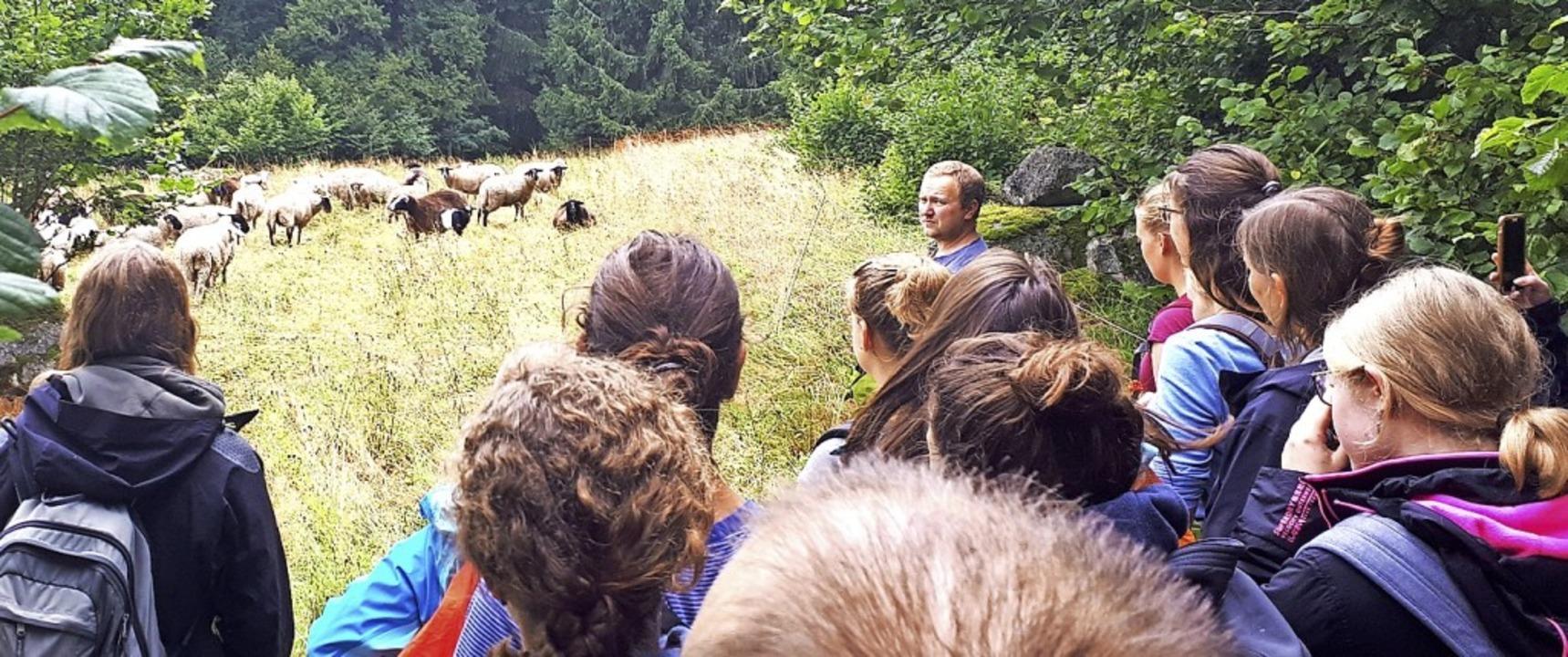 <BZ-FotoAnlauf>Sommerakademie: </BZ-Fo...ntdeckten gemeinsam den Südschwarzwald  | Foto: Biosphärengebiet