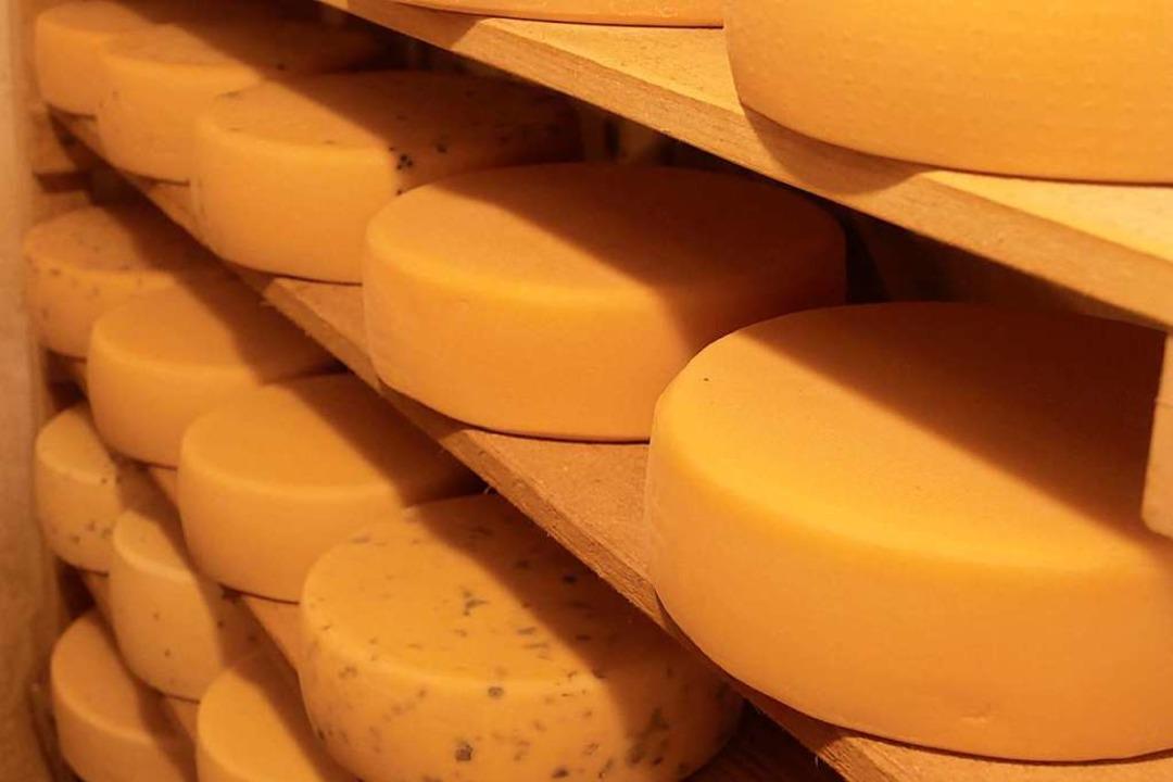 Der Käse aus Böllen reift.  | Foto: Sarah Trinler