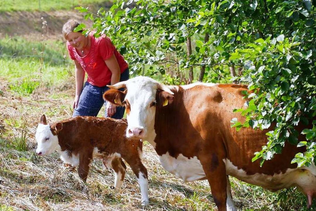 Das Hinterwälder Rind, hier mit einem ...h geschlüpften Kalb und Elke Dagenbach  | Foto: Sarah Trinler