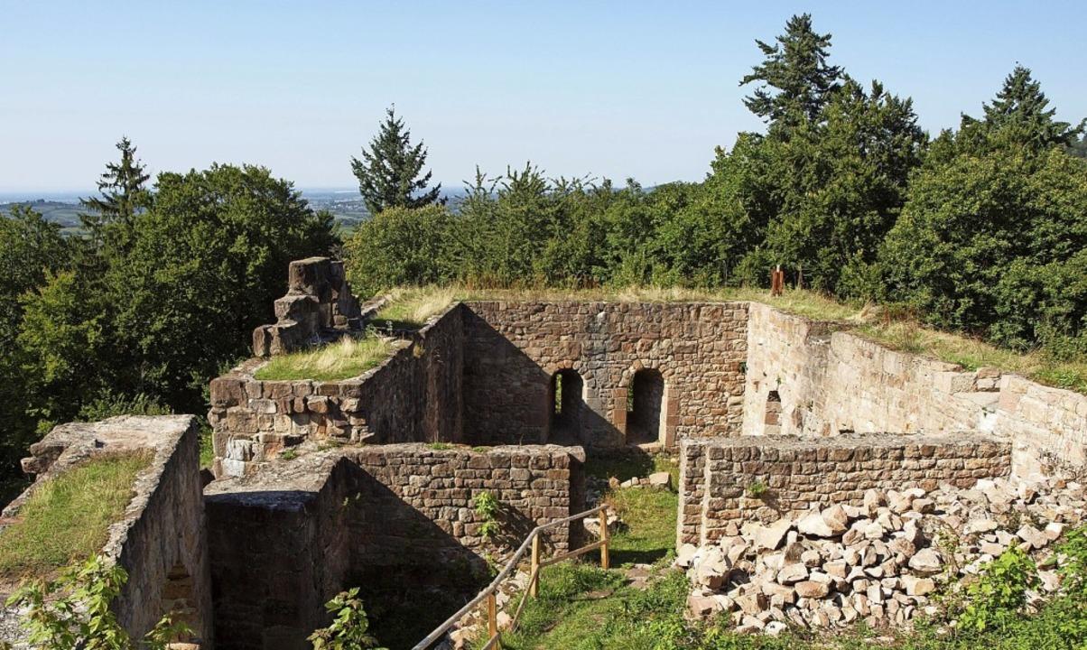 Bertram Jenisch lässt die Geschichte der Kirnburg lebendig werden.   | Foto: Michael Haberer