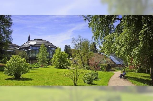Qigong im Park in Badenweiler