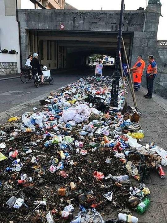Der Berg in einer Woche am Rheinufer wild entsorgten Mülls.  | Foto: Stadtreingung Basel