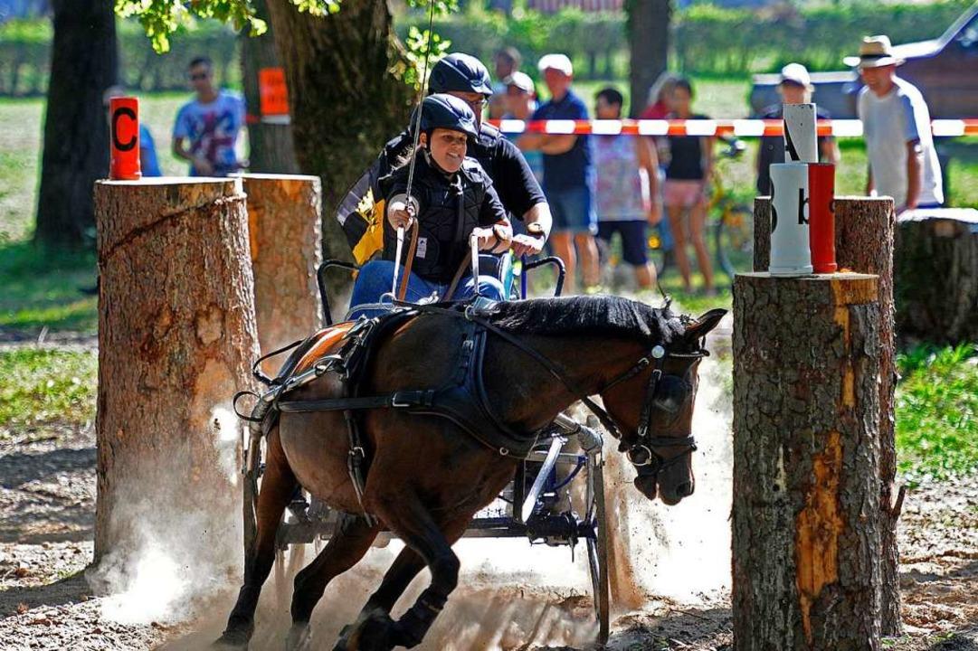 Meisterschaft der Einspänner-Ponys: Sa... vom  RFV Ottenheim in Hindernis vier.  | Foto: Pressebüro Schaller