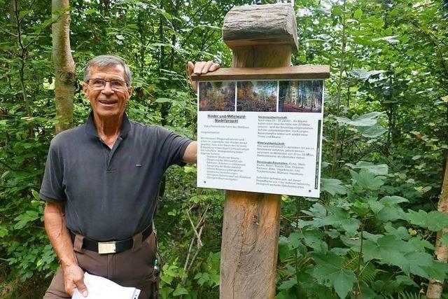 In Degerfelden wachsen 32 Gehölzarten auf einem Hektar