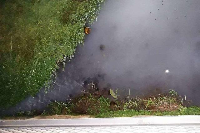 Ursache unklar: Wasser im Riedbach stark getrübt