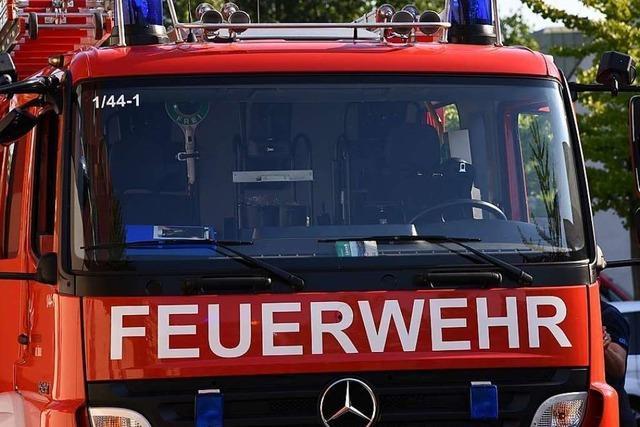 Feuerwehr findet Vermissten aus Atzenbach im Gebüsch