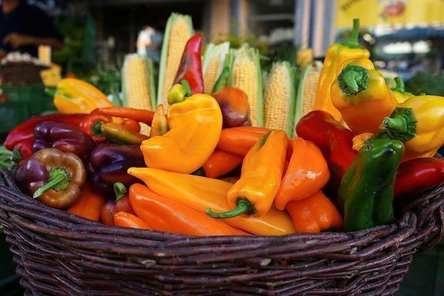 Werkstatt zur klimagerechten Ernährung in Waldkirch