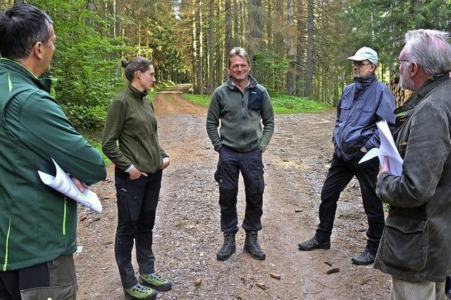 Prekäre Lage für Waldbesitzer