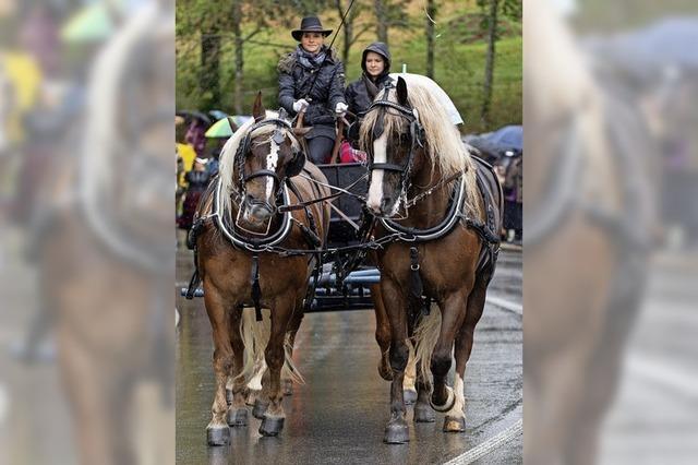 Rösser, Reiter und der Regen