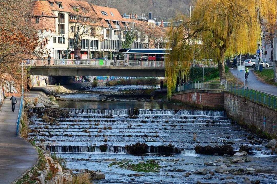 Ein städtebaulicher Wettbewerb soll üb... der Dreisam entscheiden (Archivbild).  | Foto: Ingo Schneider