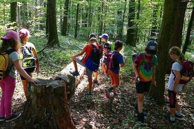Mit GPS-Geräten finden Kinder aus Gundelfingen im Wald den ersehnten Schatz