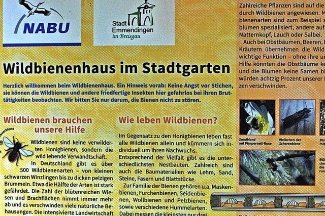 Infotafel für Haselwald-Spitzmatten?