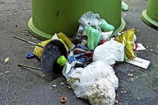 Müllsünder in Schönau