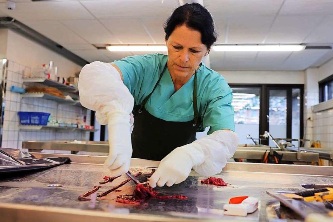Eine Wissenschaftlerin obduziert Geweb...kannten Krankheit verstorbenen Hundes.  | Foto: Ørn E. Borgen (dpa)