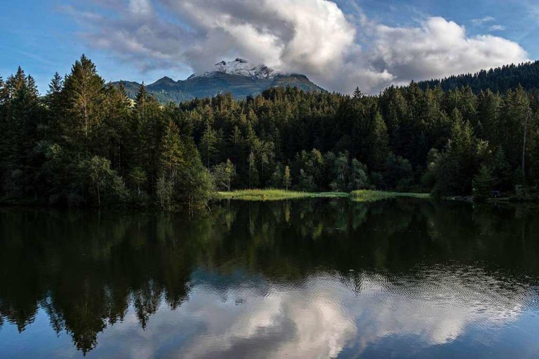 Vor allem bei kleineren Seen trete das Phänomen auf (Symbolfoto).  | Foto: Gian Ehrenzeller (dpa)