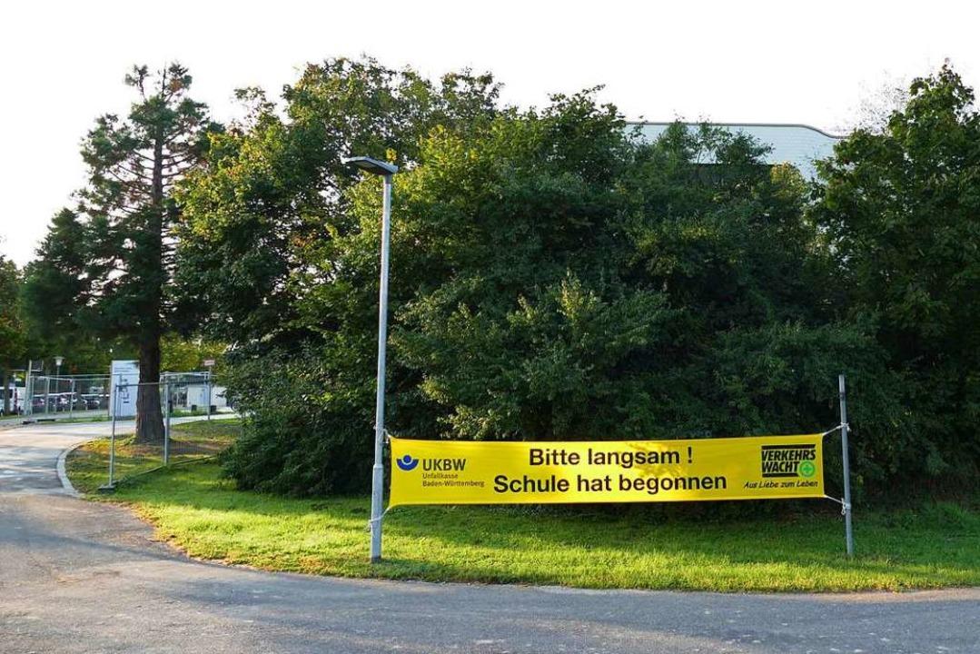 Das Areal am Südring beherbergt mit de...n, in dem Bereich Rücksicht zu nehmen.  | Foto: Frank Schoch