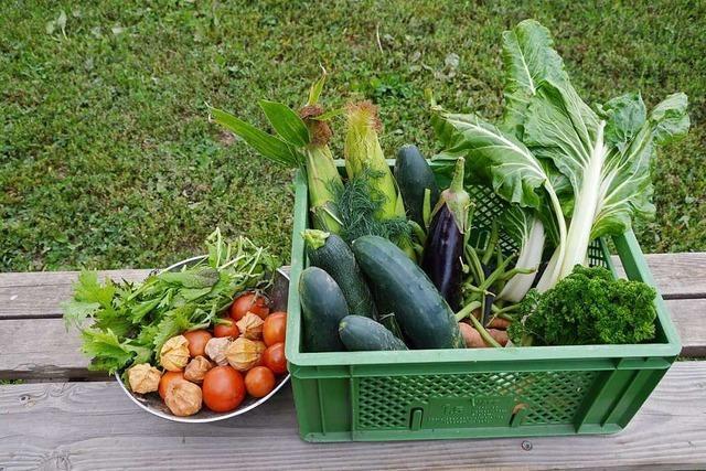 In Kirchzarten gibt es Gemüse direkt vom Feld – ohne Verpackungsmüll