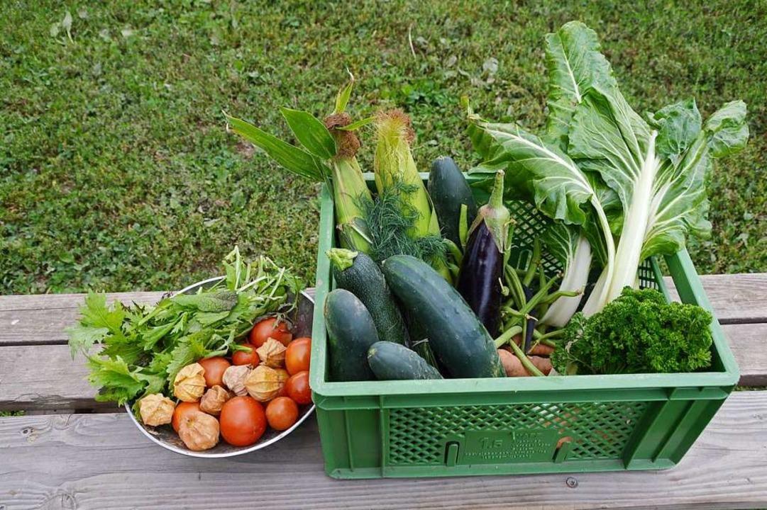 Einmal pro Woche gibt's frisches Gemüse.  | Foto: Horatio Gollin