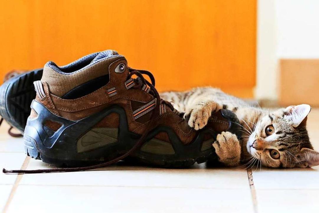 Als Thea Wahler aus Herten ihre Schuhe...ben die Leser auf Platz eins geklickt.  | Foto: Thea Wahler