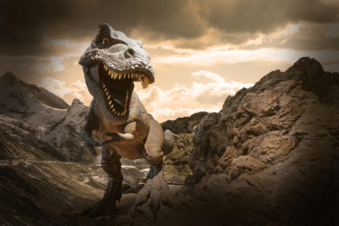 Der T-Rex hatte wohl auch Federn.  | Foto: sahachat - Fotolia