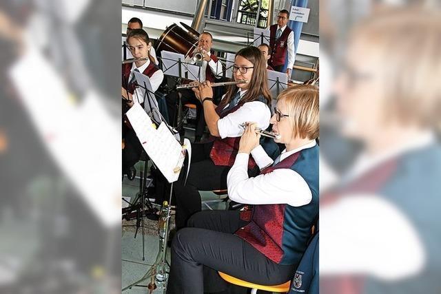 Musiker peilen Rückkehr unter die Kastanien an