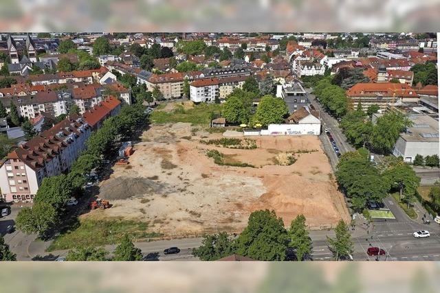 Baulücke in der Oststadt