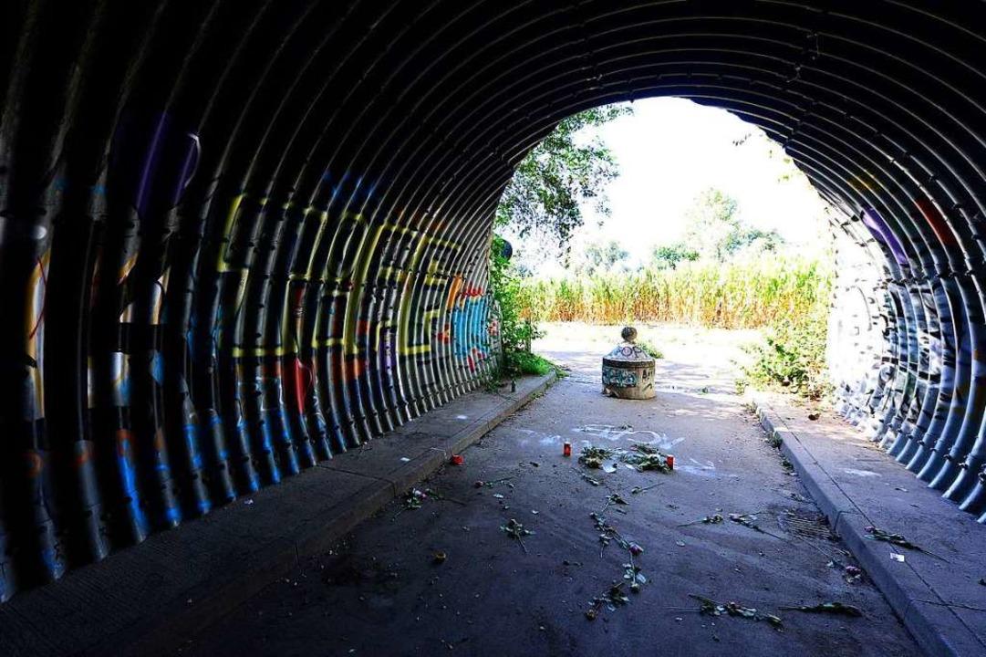 Der Tunnel schon wieder ohne Zaun.  | Foto: Ingo Schneider