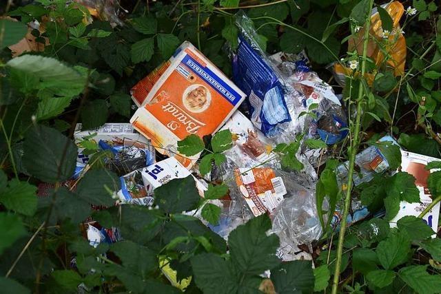 Hat der Schlierbach in Maulburg wirklich ein Müllproblem?
