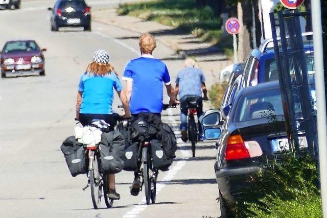 Stadt Lörrach baut Parkplätze und will doch keine Bäume dafür fällen