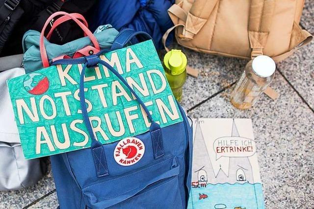 Grüne und SPD wollen den Klimanotstand für Rheinfelden