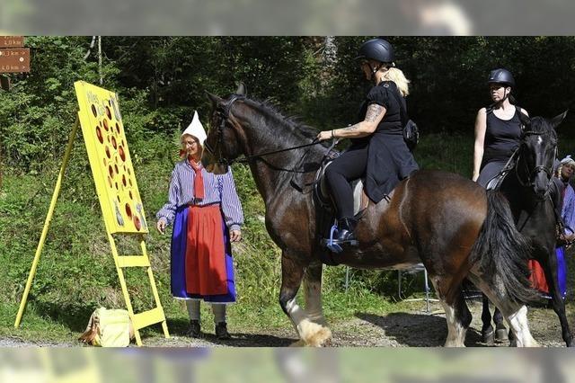 Pferde tanzen zur Country-Music