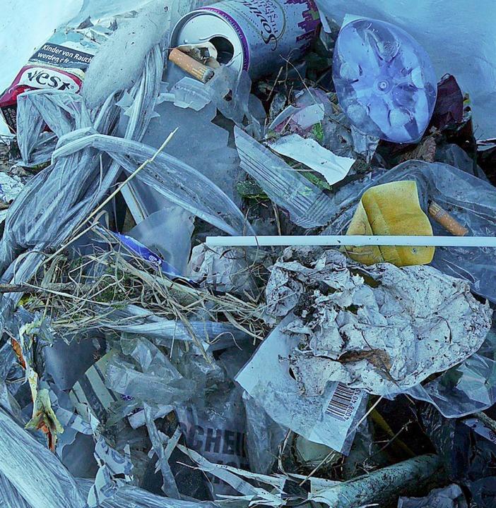 Der Blick in die Müllsäcke ist nicht sehr erfreulich.  | Foto: Sophia Kaiser