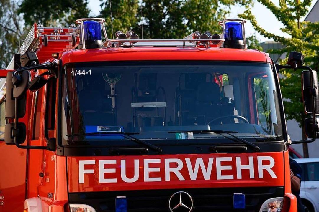 Die Feuerwehr musste zum Waldspielplatz ausrücken.  | Foto: Jonas Hirt
