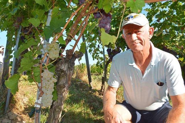 Der Ötlinger Dieter Rösch wird in Wien für seinen Wein ausgezeichnet