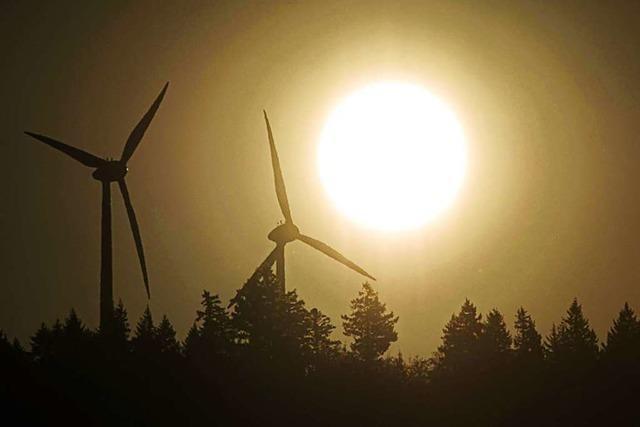 Freiburger Staatsrechtler bestreitet Nutzen der Windkraft für den Klimaschutz