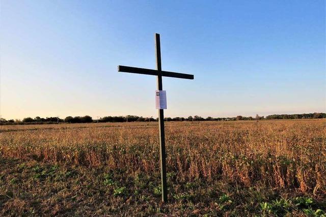 Landwirte protestieren mit grünen Kreuzen gegen Stuttgarter Agrarpolitik