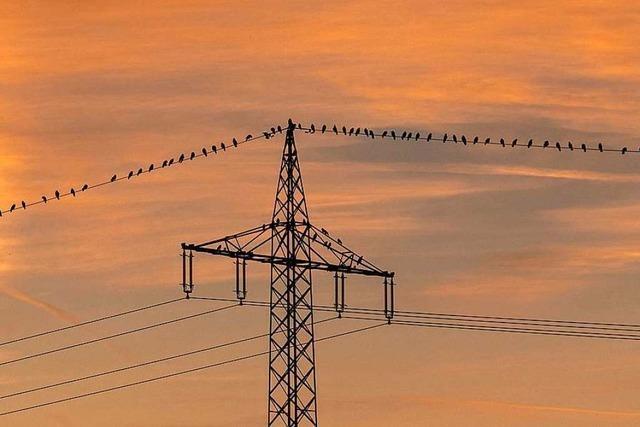 Regionale Anbieter sehen fatales Signal für den Wettbewerb