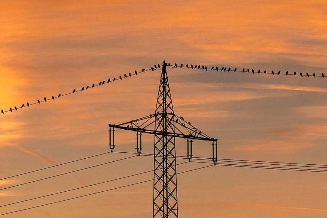 Eon gehört bald ein Großteil der deutschen Stromnetze.    Foto: Patrick Seeger (dpa)
