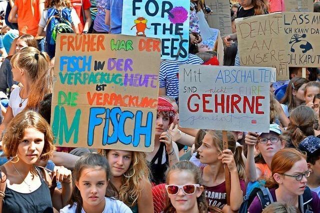 Jugendliche aus Deutschland und Frankreich debattieren über Klimaschutz in der Region