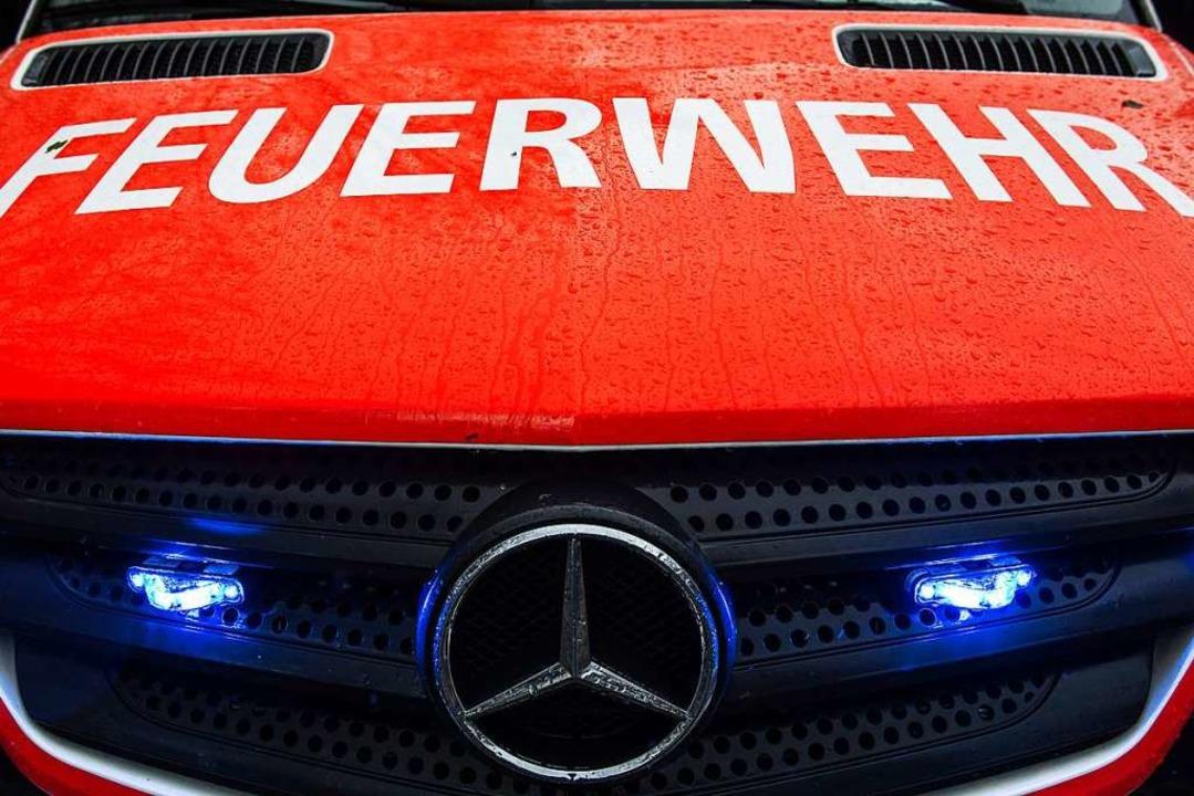 Die Feuerwehr Breisach konnte den Brand löschen (Symbolbild).  | Foto: Paul Zinken