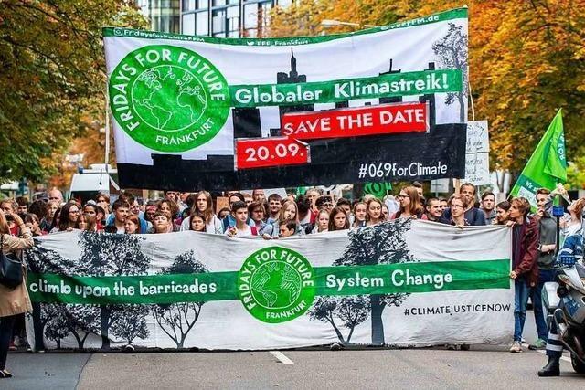 Klimaschutz wird Unterrichtsthema