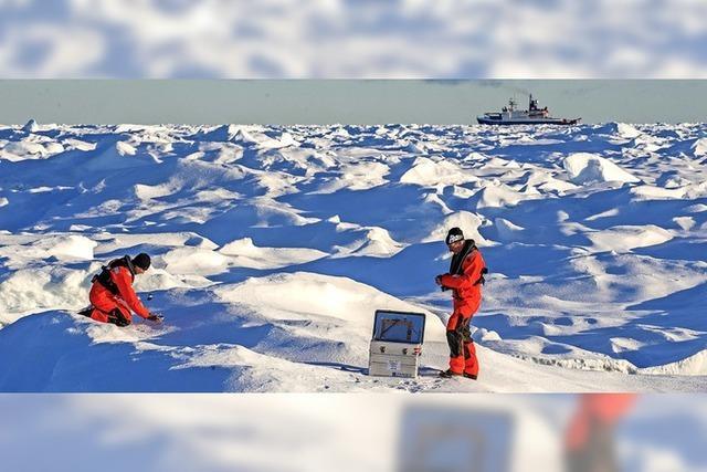 Gewappnet gegen Kälte und Eisbären