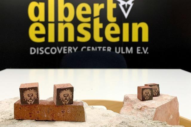 Viele Steine für Einstein