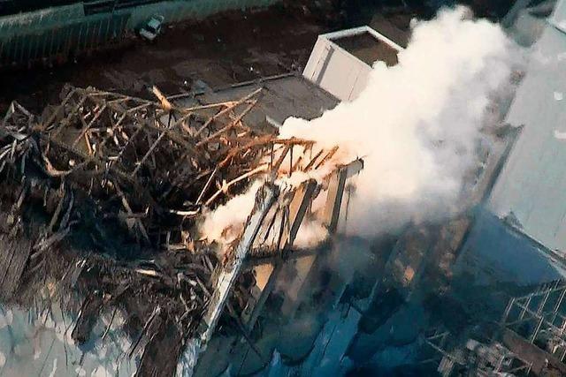 Gericht spricht Manager nach Atomunglück von Fukushima frei