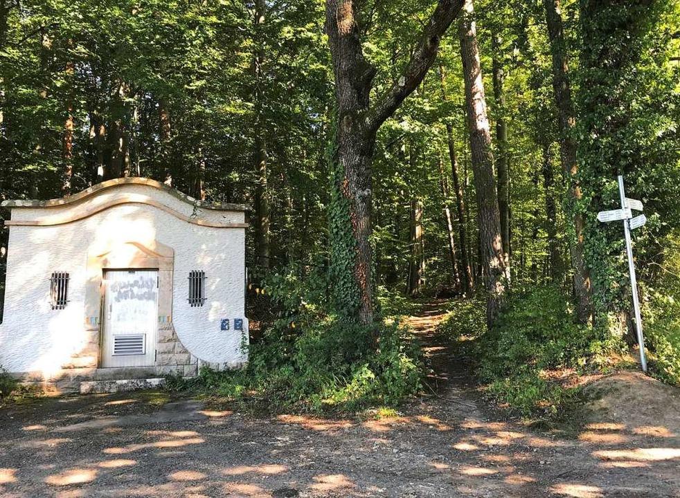 Durch den Rümminger Gemeindewald sollt...ters  der geplante Singletrail führen.  | Foto: Horst Donner